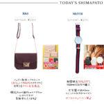 【しまパト】バッグ・財布・パスケースで1500円のプチプラ、30%OFF!ダニエルウェリントン風時計